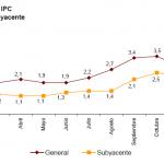 Variación IPC e IPCA enero 2013